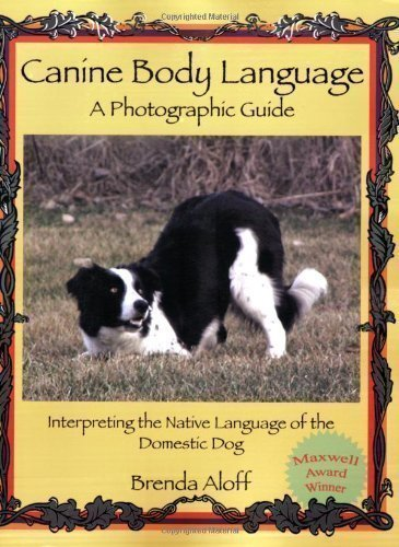 Canine Body Language: A Photographic Guide: Interpreting the Native Language of the Domestic Dog by Aloff, Brenda (2009) by First Stone