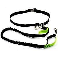 Correa de perro manos libres reflectante ajustable a la cintura para correr, pasear y adiestrar