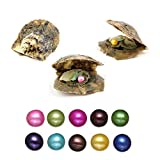 10PC Akoya Pearl Oysters with Round Pearls Inside Saltwater Cultured Love Wish Pearl with 10 Different Color (7-8mm)