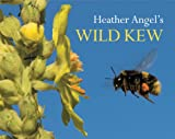 Heather Angel's Wild Kew, Heather Angel, 1842464027