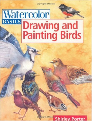 Watercolor Basics Drawing and Painting Birds