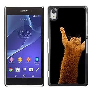EJOY---Cubierta de la caja de protección la piel dura para el / Sony Xperia Z2 / --Gato anaranjado