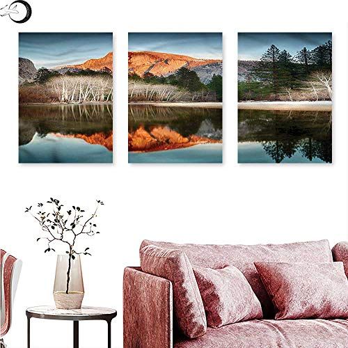 J Chief Sky Yosemite Living Room Home Office Decorations Half Dome Mountains Sunset Triptych Art Set W 20