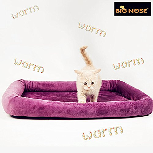 BIG NOSE-Pet Heating Pad Waterproof and Anti Tearing Design Grape Purple Velvet 23'' (Thermo Heated Kitty Cat)