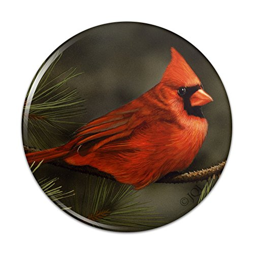 - Northern Cardinal Red Pine Perch Compact Pocket Purse Hand Cosmetic Makeup Mirror - 3