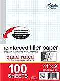 iScholar Reinforced Quad Filler Paper, 100 Sheets (83444)