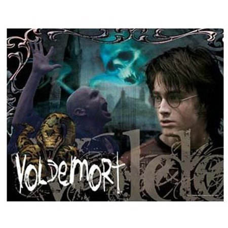 Visual Echo 3D Effect Harry Potter Voldemort Fire 500pc Lenticular Puzzle