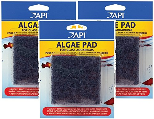 (3 Pack) API Hand Held Algae Pad - Glass Mars Fishcare North America