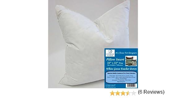 22x22 Pillow Insert Unique Amazon 60 X 60 60oz Pillow Insert 6060 White Goose Feather