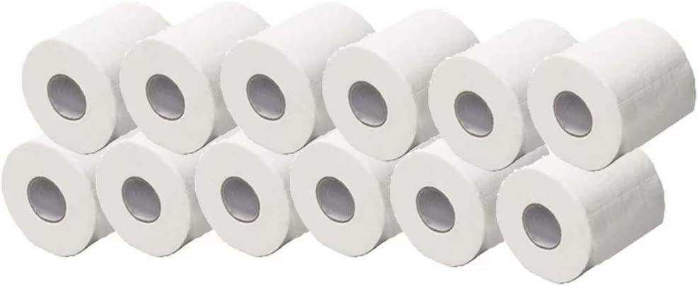 Home Kitchen Toilet Tissue Soft 10 Rolls Toilet Paper 300 Sheets Per Roll Strong and Highly Absorbent Hand Towels for Daily Use Silky /& Smooth Soft Professional Series Premium 3-Ply Toilet Paper