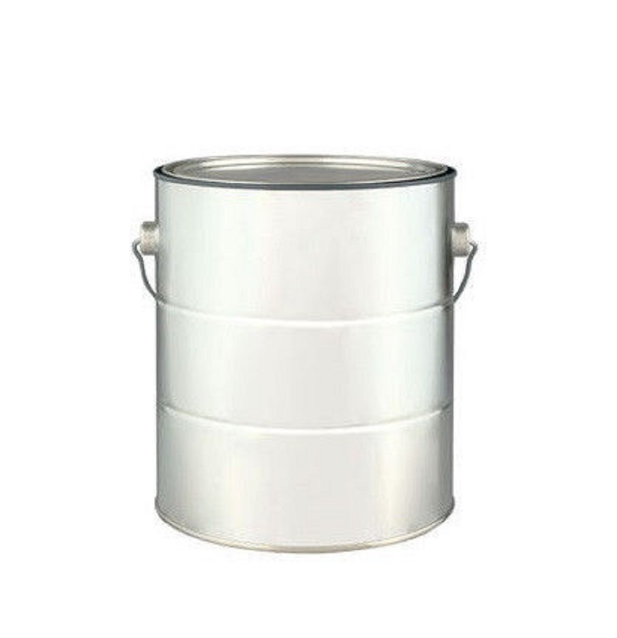 USA Premium Store EMPTY 1 GALLON PAINT CAN with LID and Handle