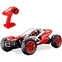 Theefun TSR2 1:10 Simulation Racer 2.4G Remote Control
