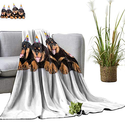 (YOYI Home Fashion Blanket Kids Rottweiler Puppi P Hats Print Black and Marigold Lightweight Blankets for Couch Bed Sofa)