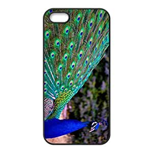 Colorful Peacock Tail Hight Quality Plastic Case for Iphone 5s