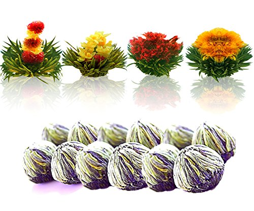 Tea Beyond FLS-3SET-BLF2100 12-Pack Fab Flowering Blooms (Blossoming Tea)