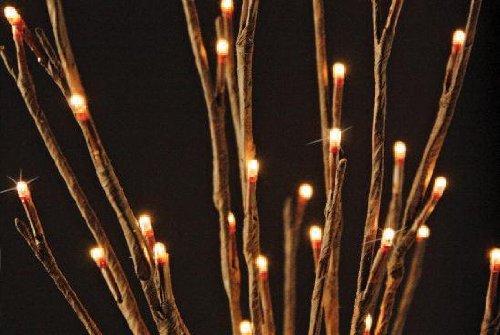 Mains Electric Garden Lights