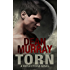 Torn: A YA Paranormal Romance Novel (Volume 2 of the Reflections Books)