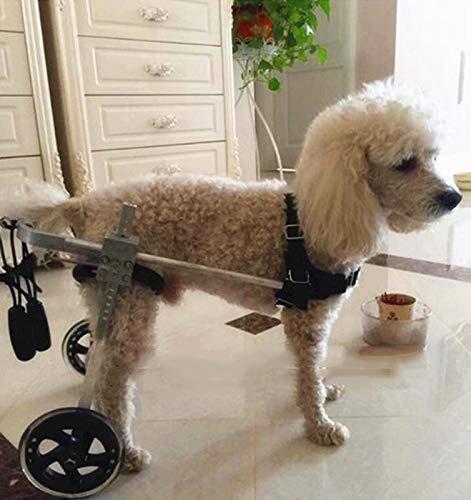 - 50 kg disponibles en una va ajustables Carrito para perros caminatas asistidas 3.3 lbs lesiones en las extremidades perros peque/ños grandes 1.5 kg 110 lbs 2 ruedas adecuado para mascotas