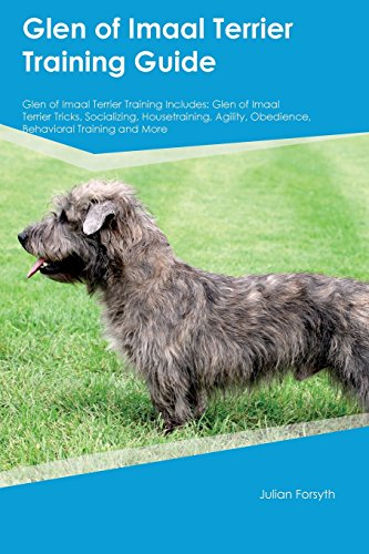 Glen of Imaal Terrier Training Guide Glen of Imaal Terrier Training Includes: Glen of Imaal Terrier Tricks, Socializing, Housetraining, Agility, Obedience, Behavioral Training and More