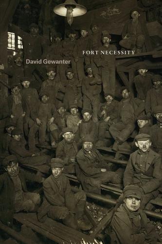 Download Fort Necessity (Phoenix Poets) ebook