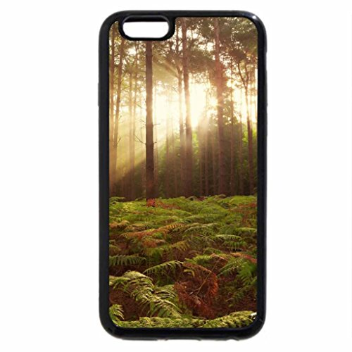 iPhone 6S / iPhone 6 Case (Black) Forest Dawn