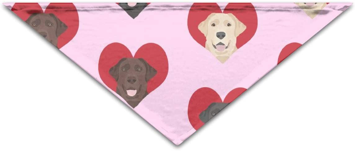 Cap Pillow Home Pet Bandanas Love Labradors Heart Labrador Dog Valentines Heart Love Dogs Cute Pink Triangle Bibs Scarfs For Small To Large Dogs Cats Amazon Co Uk Pet Supplies