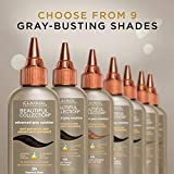 Clairol Professional Beautiful Collection, Advanced