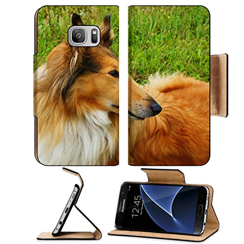 (Liili Premium Samsung Galaxy S7 Flip Pu Wallet Case IMAGE ID: 18794069 Portrait of sable and white Long haired Rough Collie dog)