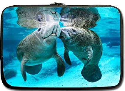 ef1ef1f5b087 Amazon.com: Manatee 13 Inch Laptop / Notebook Computer / Sleeve Case ...
