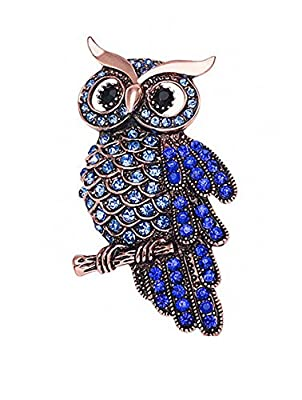 Ahugehome Womens Brooch Pin Heart Rose Flower Owl Cross Alloy Inlay Crystal Vintage Style Dress Shirt Wedding Gift Box