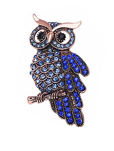 Ahugehome Womens Brooch Pin Heart Rose Flower Owl Cross Alloy Inlay Crystal Vintage Style Dress Shirt Wedding Gift Box (DA Owl Blue)
