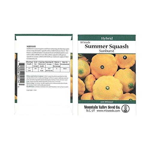 - Sunburst Hybrid Summer Squash Garden Seeds - 10 Seed Packet - Non-GMO - Vegetable Gardening Seed