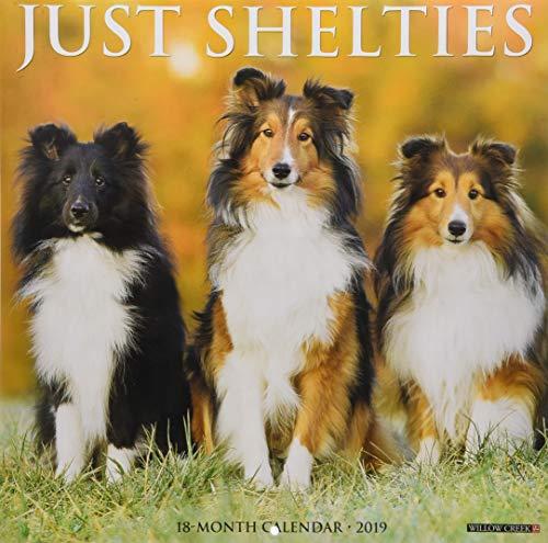 Just Shelties 2019 Wall Calendar (Dog Breed Calendar)