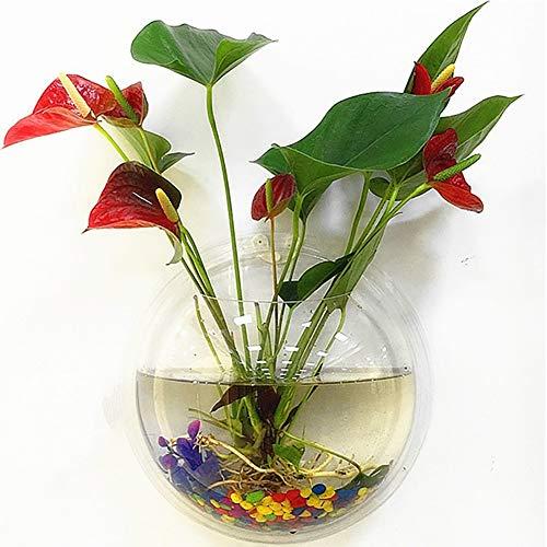 lightclub Creative Wall Mounted Clear Acrylic Round Fish Tank Flower Pot Vase Home Decor Transparent 15cm