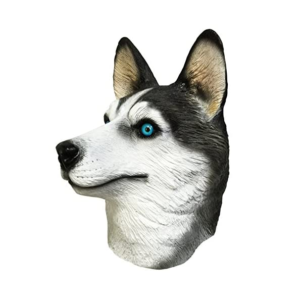 Off the Wall Toys Dogs Husky Dog Costume Face Mask Kennel Club Dog Mask for Halloween Sports and More 3