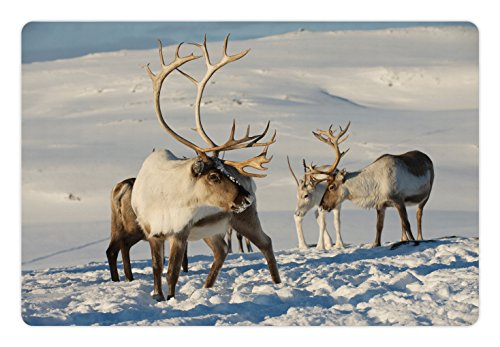 Ambesonne Winter Pet Mat for Food and Water, Reindeers Natural Environment Tromso Northern Norway Caribou Antler Wildlife, Rectangle Non-Slip Rubber Mat for Dogs and Cats, Brown Ivory - Antlers Caribou