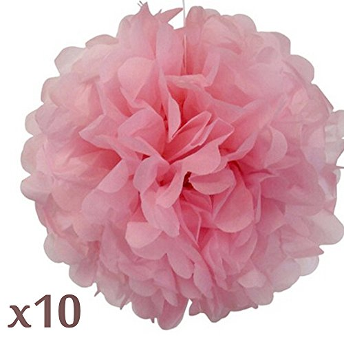WOM-HOPE® 10 Pack 10 Inches Tissue Paper Pom Pom Flower Ball Pom-poms - Wedding Party Supplies Decorations Birthday Parties and Baby Showers Party Decorations (Light Pink (10-inch Diameter))