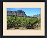 Framed Print of Vineyards of Franschoek, Cape winelands, Western Cape, South Africa, Africa