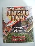 The Amazing Dinosaur Plant Grow Prehistoric Evergreen