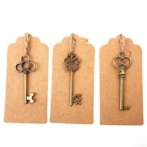 Bingcute Mixed Set of 30 Vintage Bronze Skeleton Key Charm with 30PCS Kraft Paper Gift Tags & 30 Feet Natural Jute Twine (Bulk Vintage Keys)