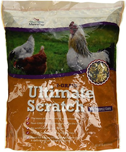 - Manna Pro Seven Grain Ultimate Scratch with Purple Corn, 10 lb