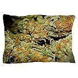 """CafePress Cannabis Pillow Case Standard Size Pillow Case, 20""""x30"""" Pillow Cover, Unique Pillow Slip"""