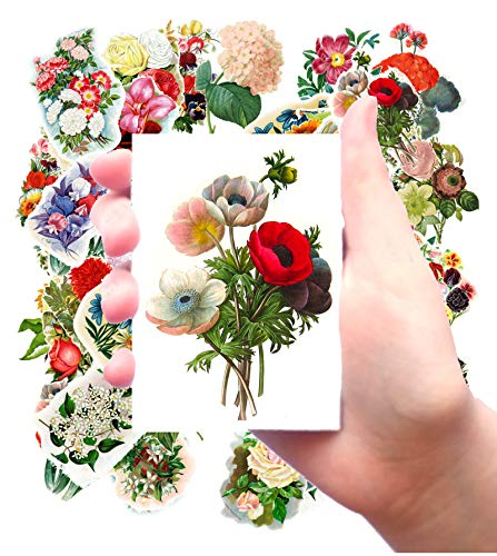 Large Stickers (pack of 24 stickers 2.5x3.5 each) Rose Garden Flowers Vintage Seed Pockets FLONZ Redoute Wildflowers