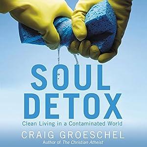 Soul Detox Audiobook