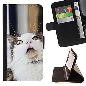 Momo Phone Case / Flip Funda de Cuero Case Cover - LOL Funny Cat - Apple Iphone 5 / 5S