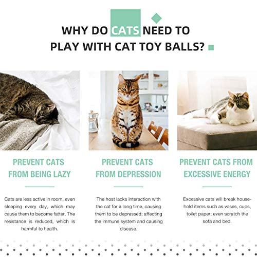 Cat Toys Ball Best Interactive Cat Toys Automatic Self-Rotating and USB Rechargeable LED Light Electronic Cat Toy Balls for Indoor Cats Exercise Toys (Newest Version) 6
