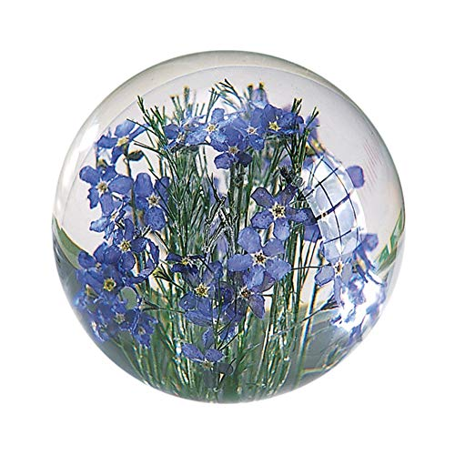 (HAFOD GRANGE Forget-Me-Not Round Resin Paperweight)