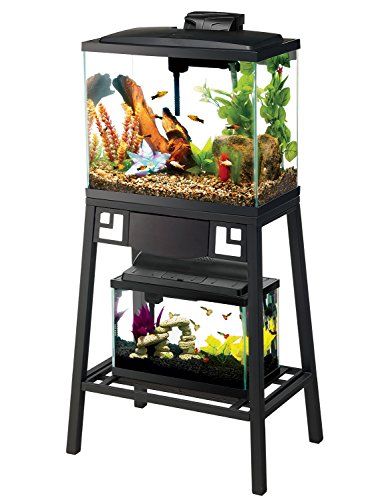 Aqueon Forge Metal Aquarium Stand, 20 by 10-Inch, Black