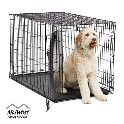 MidWest Homes Pets Dog