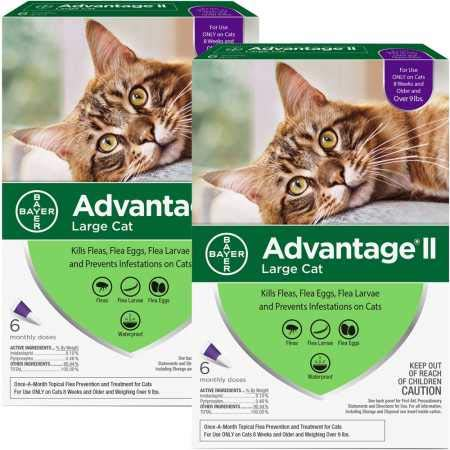 advantage 12 Month II Flea Control Large Cat (for Cats Over 9 lbs.)
